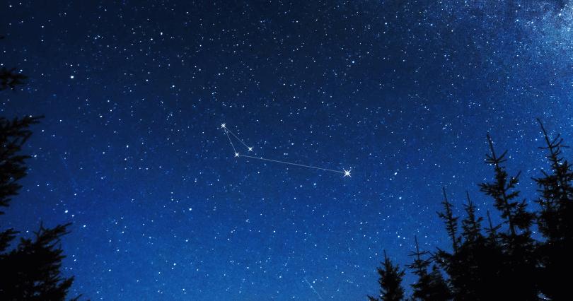Apus Constellation