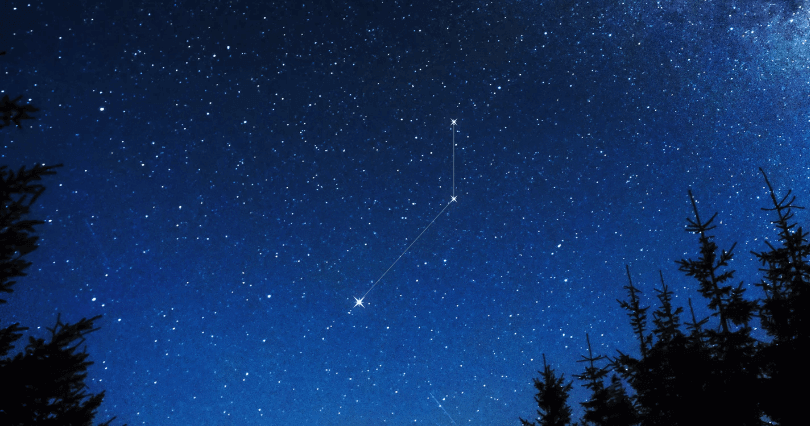 Pictor Constellation