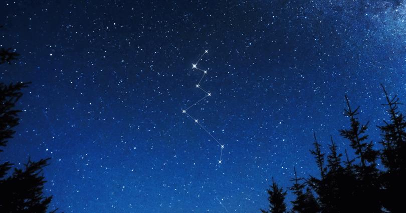 Lacerta Constellation